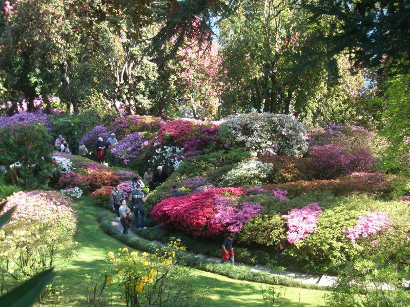 Tremezzo Villa Carlotta Giardino Botanico